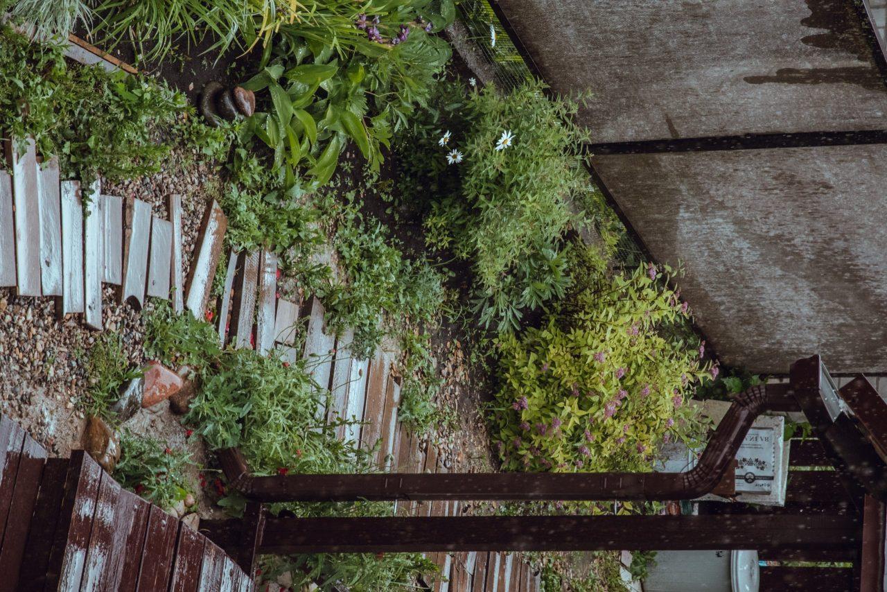 Ne plus entretenir son jardin, c'est possible